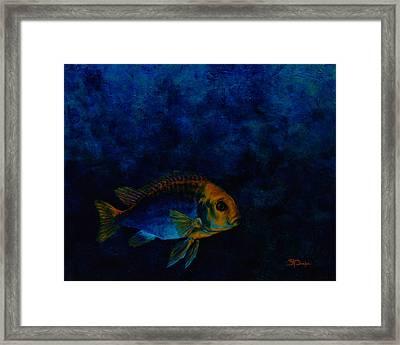 Hooky Framed Print by Beth A Doellefeld