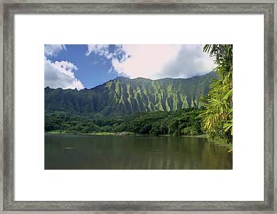 Hoolanluhia Botanical Garden Framed Print by Michael Peychich