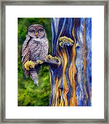 Hoo's Look'n Framed Print by JoLyn Holladay