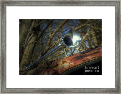 Hooters Framed Print by Fred Lassmann
