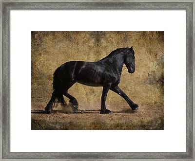 Hooves Of Thunder Framed Print