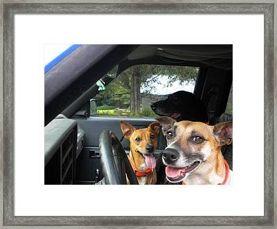 Framed Print featuring the photograph Hop In I'll Drive by Diannah Lynch