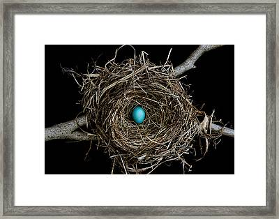 Hope 1 Framed Print