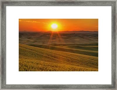 Hope And Glory Framed Print by Mark Kiver