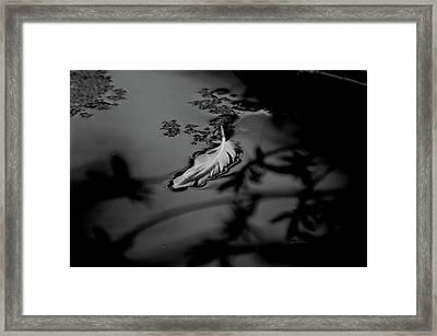 Hope - Bw Framed Print by Marilyn Wilson