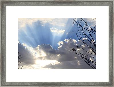 Framed Print featuring the photograph Hope by Christie Minalga