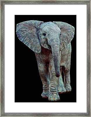 Hope For The Future Framed Print by Michael Durst