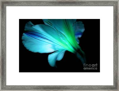 Hope Is On The Way Framed Print by Krissy Katsimbras