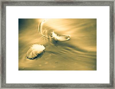 Hope Is The Thing With Feathers Framed Print by Bob Orsillo