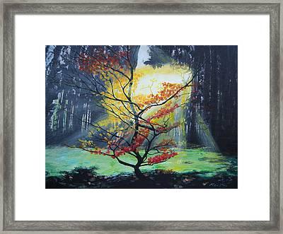 Hope Framed Print by Ken Day