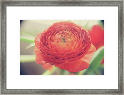 Framed Print featuring the photograph Hope by Laurie Search