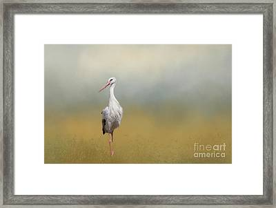 Hope Of Spring Framed Print