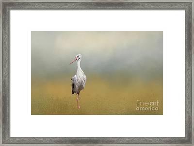 Hope Of Spring Framed Print by Eva Lechner