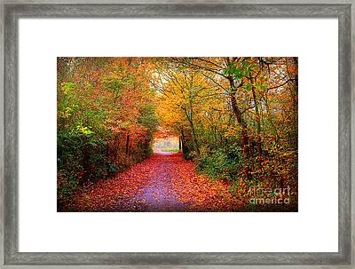 Hope Framed Print by Jacky Gerritsen