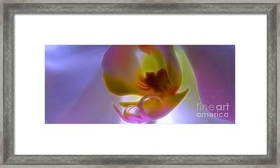 Hope Shines Bright Framed Print