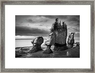 Framed Print featuring the photograph Hopewell Rocks by Patrick Downey