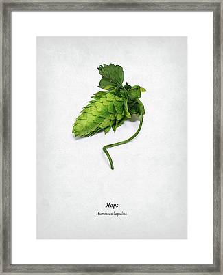 Hops Framed Print by Mark Rogan