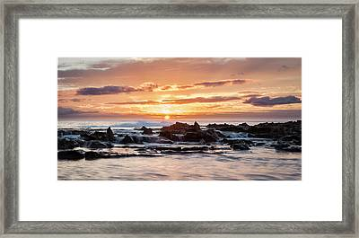 Horizon In Paradise Framed Print by Heather Applegate