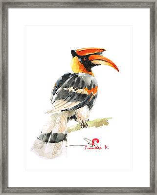 Hornbill Bird Framed Print by Pornthep Piriyasoranant