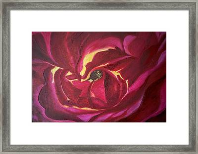 Hornby Island Rose Framed Print by Caroline Liggett