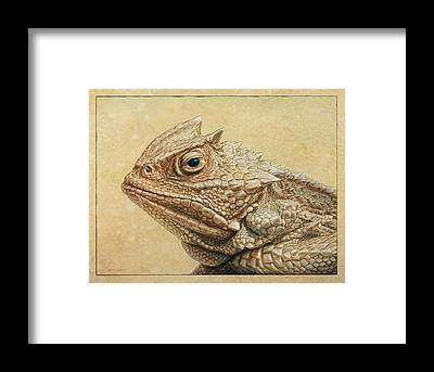 Lizard Framed Prints