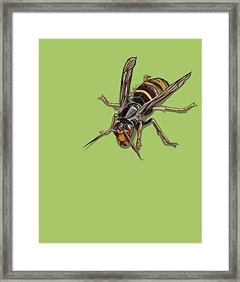 Framed Print featuring the painting Hornet by Jude Labuszewski