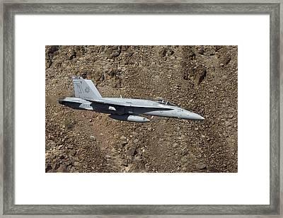Hornet Framed Print by Mirek  Towski