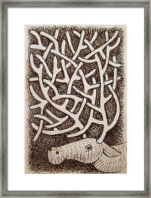 Horns Framed Print