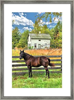 Horse And Barn At Old World Wisconsin Framed Print