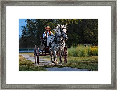 Horse And Buggy Framed Print by Lone Dakota Photography