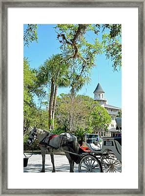 Horse And Carriage At Jekyll Island Club Hotel Framed Print by Bruce Gourley