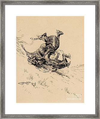 Horse And Cowboy Tumbling Downhill  Framed Print by Celestial Images