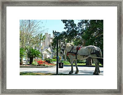 Horse And Jekyll Lsland Club Hotel Framed Print by Bruce Gourley