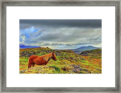 Framed Print featuring the photograph Horse And Mountains by Scott Mahon