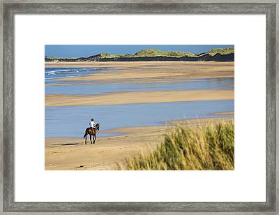 Horse And Rider On Beach With Grassy Framed Print by Michael Interisano
