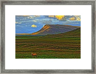 Framed Print featuring the photograph Horse And Sky by Scott Mahon
