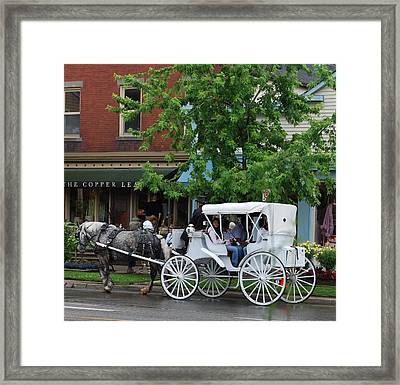 Framed Print featuring the photograph Horse And White Buggy by Nancy Bradley