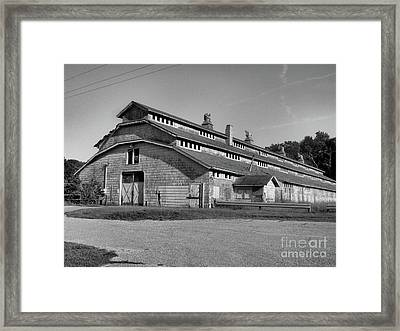 Horse Barn Exited Framed Print