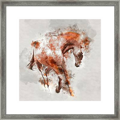 Horse Colorful Portrait 1 - By Diana Van Framed Print