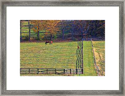 Horse Country # 2 Framed Print