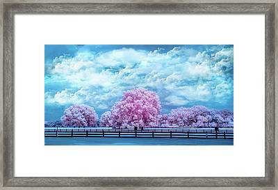 Framed Print featuring the photograph Horse Country In Pink by Louis Ferreira