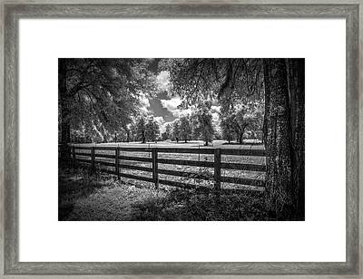 Framed Print featuring the photograph Horse Country by Louis Ferreira