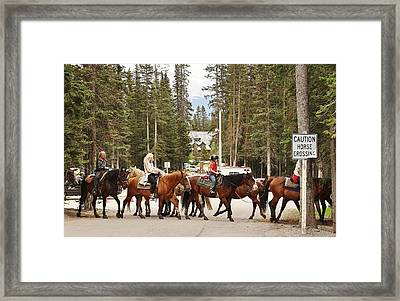 Framed Print featuring the photograph Horse Crossing by Al Fritz