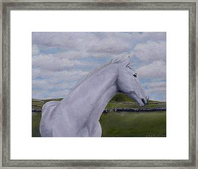 Horse Framed Print by Diane Daigle