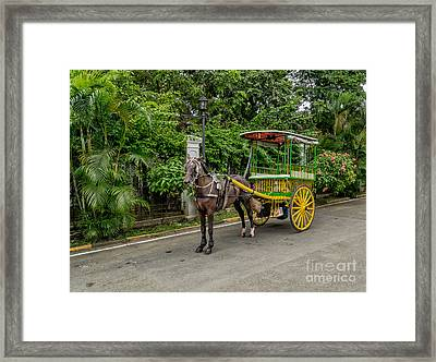 Horse Drawn Framed Print by Adrian Evans