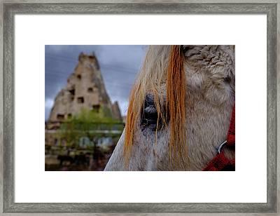 Horse Eye -2  Framed Print by Okan YILMAZ
