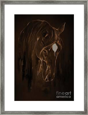 Horse Face 3801 Framed Print by Gull G