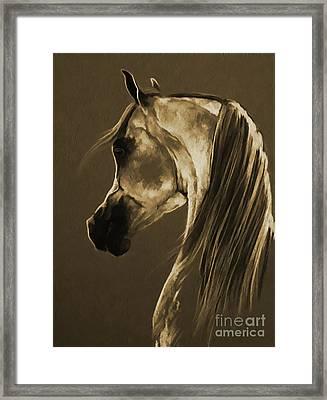 Horse Face 701 Framed Print by Gull G