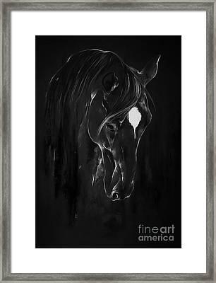 Horse Face Art 4601 Framed Print by Gull G