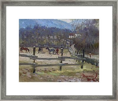 Horse Farm In Limana Framed Print